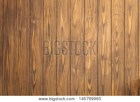 Old wood background. Vintage wooden texture for retro design