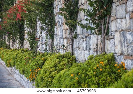 Sandstone wall with green grass and flowers