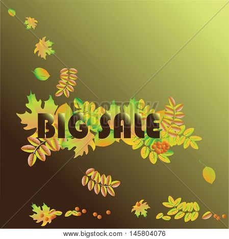 BIG SALE Autumn and great seasonal discounts