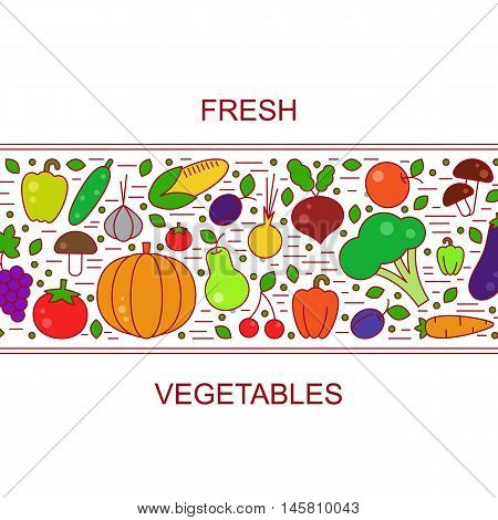 Fresh fall vegetables set vector line illustration. Healthy food concept. Local farm design. Organic vegetarian diet object collection. Natural nutrition. Trendy flat style. Agriculture autumn harvest