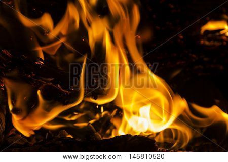 Fire flames on a black background. Blaze fire flame texture background. Close up of fire flames isolated on black background. Burn. Abstract fire flames background. Texture poster