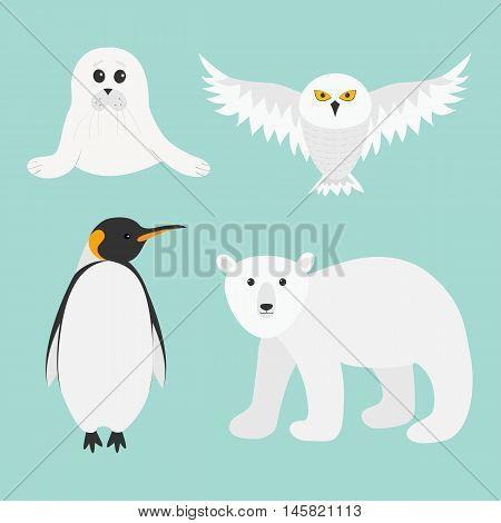 Arctic polar animal set. White bear owl king penguin Emperor Aptenodytes Patagonicus Seal pup baby harp. Kids education cards. Winter antarctica blue background Flat design. Vector illustration