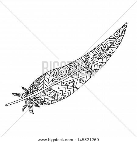 Boho patterned feather drawing on white background