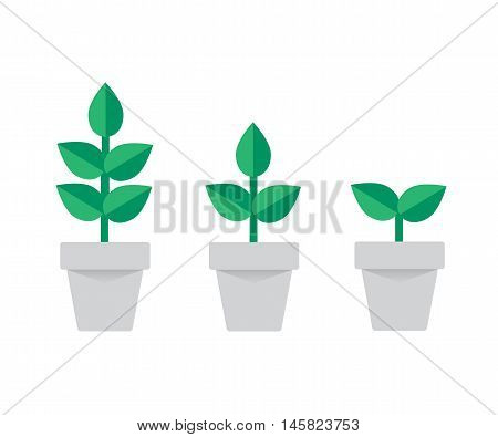 planting tree process, business concept flat design