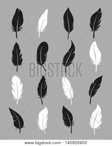 Feathers icons. Fluffy black and white feather vector symbols on grey background
