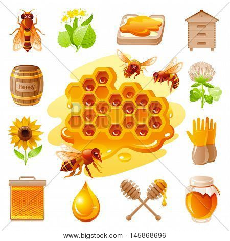 Bee honey icon set with cartoon flat icons - honeybee, linden, sandwich, honeycomb, honeyhive, bareel, jar, clover flower. On white background. Modern elegant style, beekeeping food concept template.