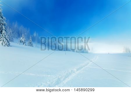 Beautiful mountain snowy landscape and snow covered trees and snowy paths in the snow. Beautiful sunny day in the mountains