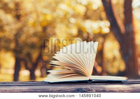 Open book on a wooden bench in autumn park. Reading education and back to school concept.