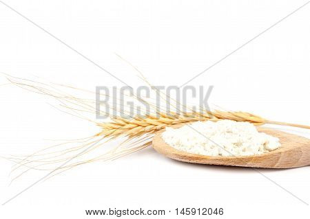 Spikes of wheat and flour in a wooden spoon isolated on a white background.