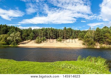 The river in a pine forest with a sandy beach.