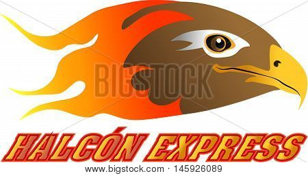 This is a grat Logotype desing by Lushox Arts. Falcon Express (Spanish)