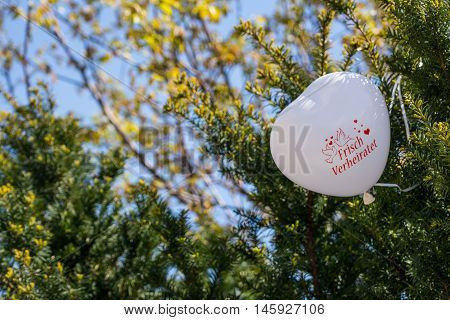 Newly Wed White Heart Balloon Stuck in Green Bush Reception Outdoors