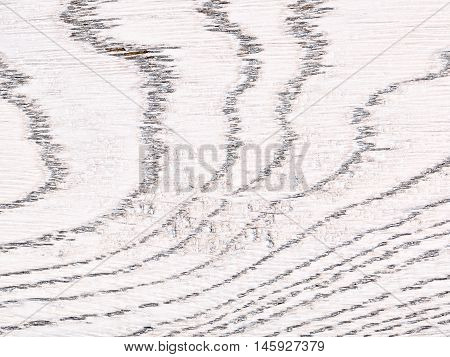 white painted oak wooden texture, close up background