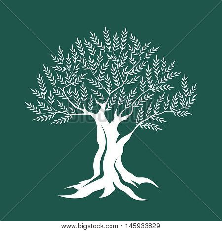 Olive tree silhouette icon isolated on green background. Web graphics modern vector sign. Premium quality illustration logo design concept pictogram.