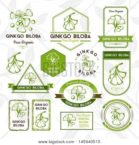 Ginkgo biloba. Labels and stickers collection. Vector decorative isolated elements for package design.