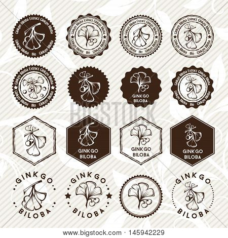 Ginkgo biloba. Circle and hexagon stamps and stickers set. Vector decorative isolated elements for package design. Monochrome version