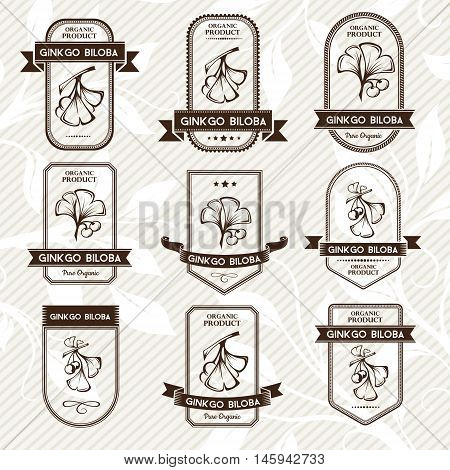 Ginkgo biloba. Tags stickers and banners. Vector decorative isolated elements for package design. Monochrome version