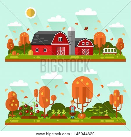 Flat design vector autumn landscape illustrations with farm barn, bench, leaf fall. Garden with beds of carrots, tomatoes, gardener. Farming, agricultural, organic products concept.