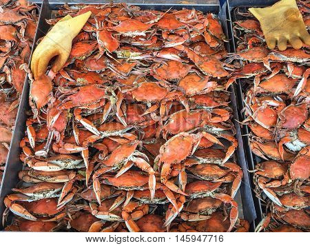crabs at at a local market in the stall boiled and hot