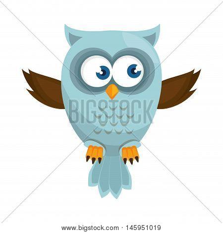 owl bird  cartoon animal nature cute wisdom vector illustration