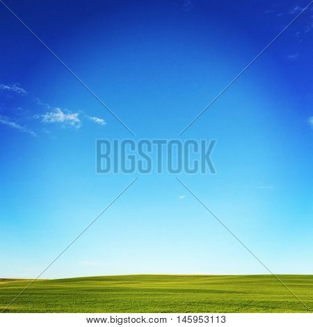 Blue Sky and field with green grass