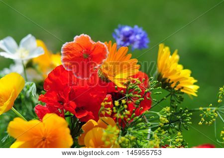 Bouquet With Summer Flowers
