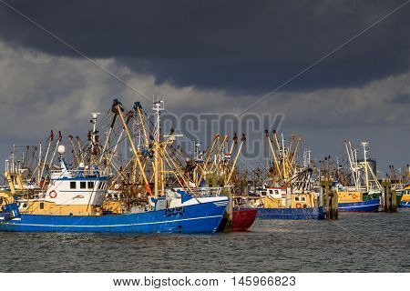 Dutch Fishing Boats In Lauwersoog Harbor