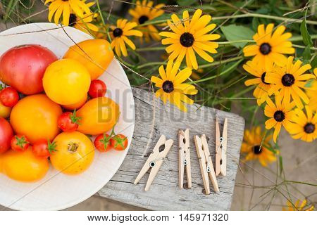 harvest of tomatoes on plate in a garden with flowers