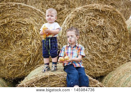 Two little brothers holding an ear of corn standing on the haystack