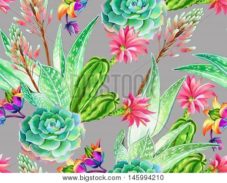 seamless pattern with succulents and cactuses. Blossoming succulents design in watercolor illustration. succulents bouquets for textile, fashion, interior. stylish colors and elements.
