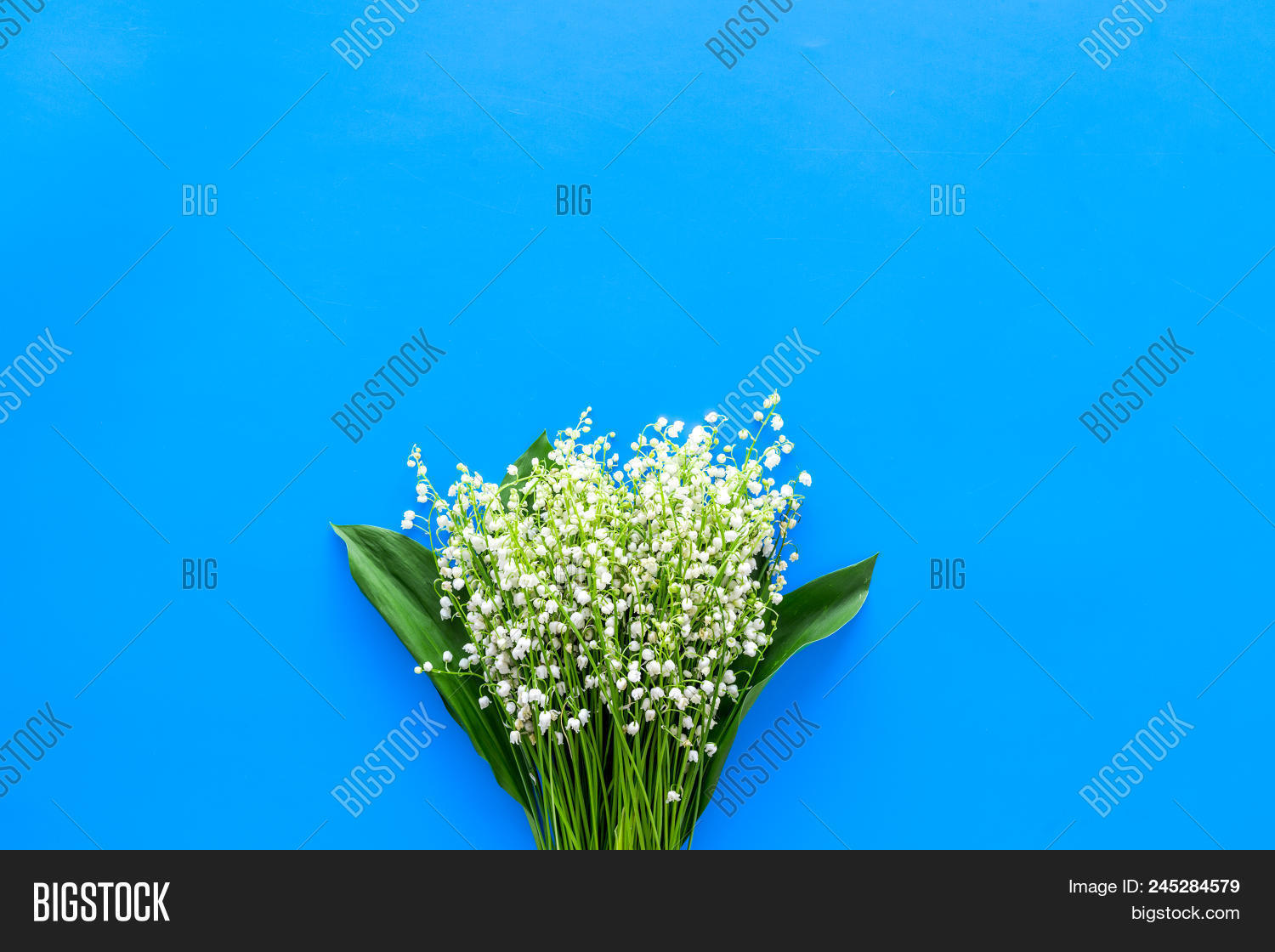 Small fragrant spring image photo free trial bigstock small and fragrant spring flowers bouqet of lily of the valley flowers on pastel blue mightylinksfo