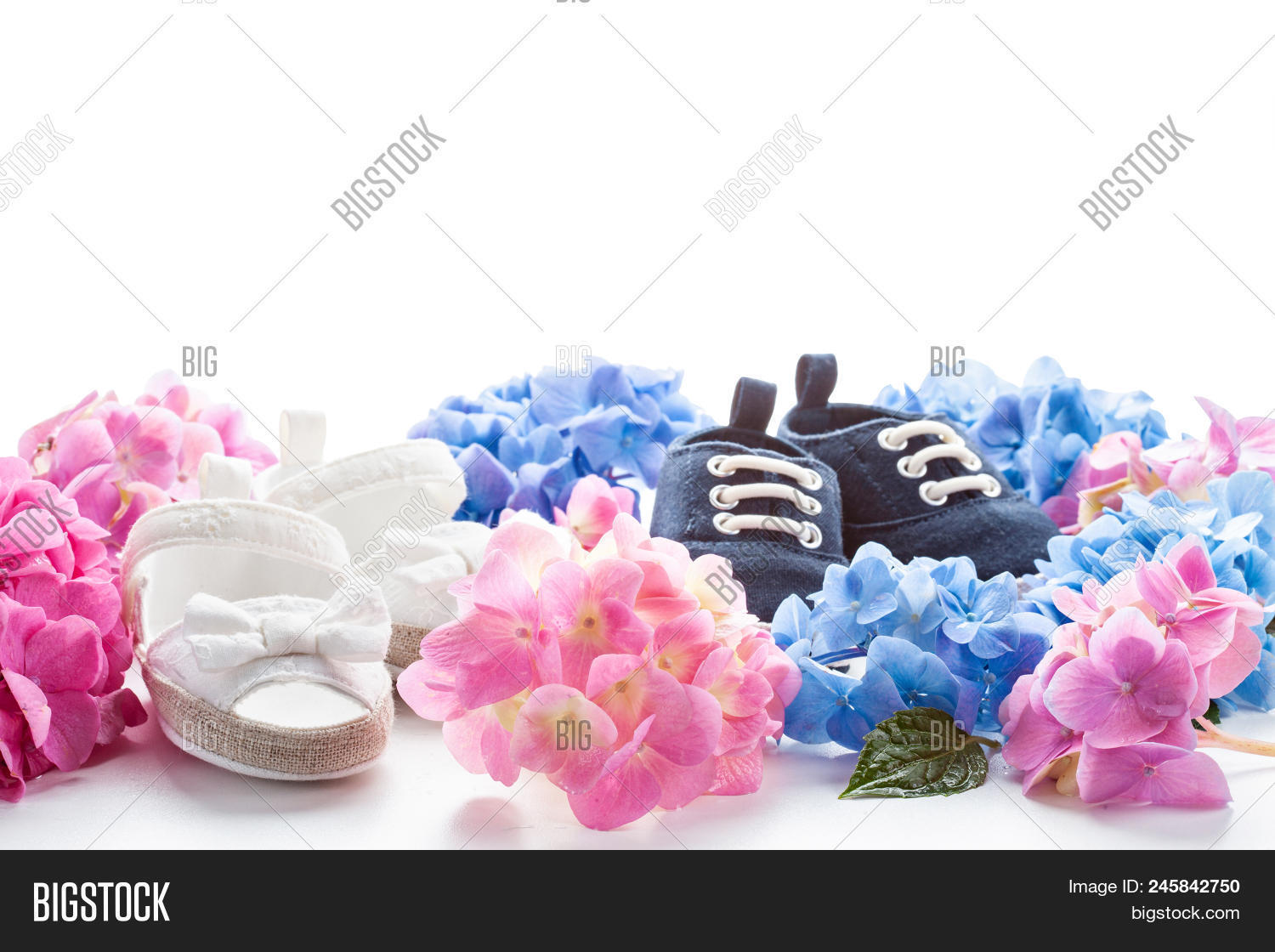 Cute Newborn Baby Boy And Girl Shoes With Hortensia Flowers Decoration Shower Twins