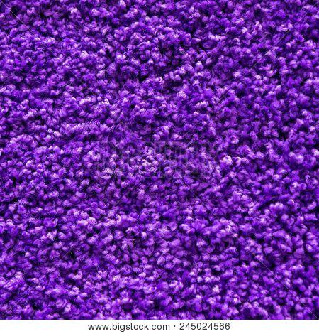 Carpet texture. Violet carpet background close up