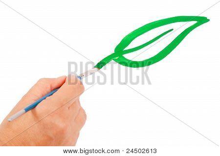 Hand draws a green leaf