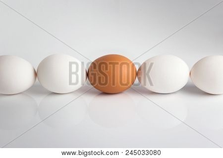 Individuality; Uniqueness. Group Of White Eggs And One Beige; Brown Concept Exclusivity; Better Choi