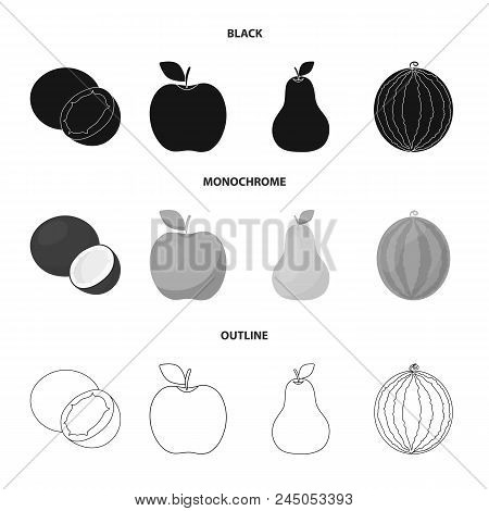 Coconut, Apple, Pear, Watermelon.fruits Set Collection Icons In Black, Monochrome, Outline Style Vec