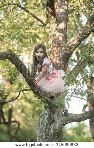 Vacation, Activity, Lifestyle. Small Girl Climb Tree In Summer Garden, Activity. Childhood, Youth, G