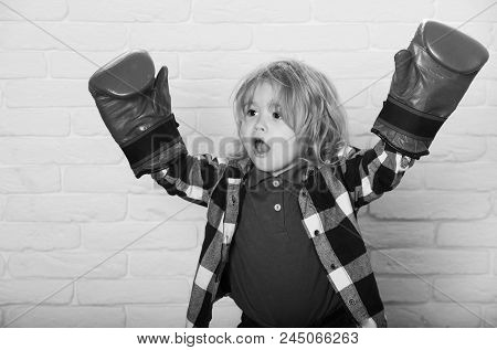 Young Champion. Champion Or Happy Small Boy In Red Boxing Gloves, Winning Pose