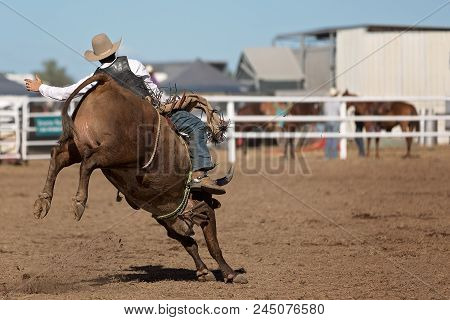 A Cowboy Competing In Bucking Bull Riding At A Country Rodeo