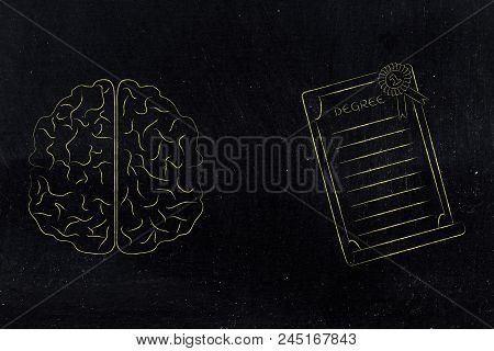 Genius Mind Conceptual Illustration: Brain Next To Degree Diploma With Ribbon