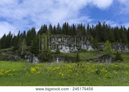 Flowering Meadow On A Mountain Slope, With Limestone Rocky Ledges And Forest In The Background
