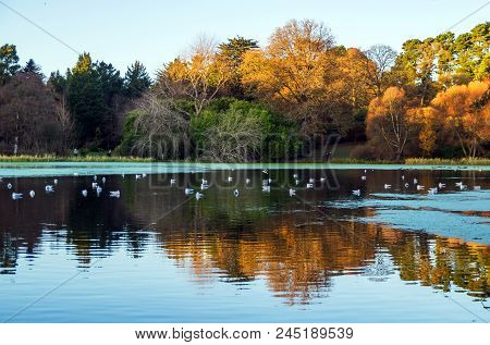 A Stunning View Across A Lake With Beautiful Reflection And Birds