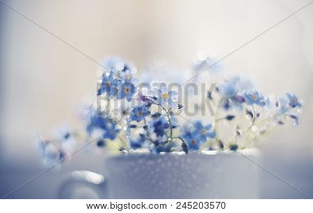 Bouquet Of Blue Forget-me-nots Close Up In A Cup At A Window, Are Lit With The Sun. Forget-me-nots A