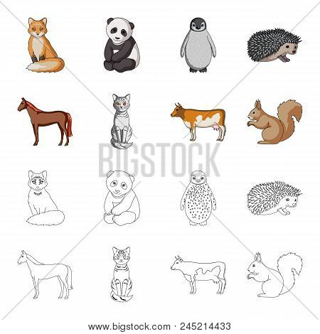 Horse, Cow, Cat, Squirrel And Other Kinds Of Animals.animals Set Collection Icons In Cartoon, Outlin