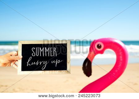 closeup of a caucasian man holding a signboard with the text summer hurry up written in it, and a swim ring in the shape of a pink flamingo on the sand of a beach, with the ocean in the background poster