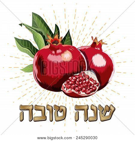 A Greeting Card With Stylish Lettering Shana Tova. Vector Image Of Juicy Ripe Pomegranate. Happy And