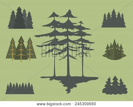 Tree Outdoor Travel Pine Silhouette Logo Coniferous Natural Badge Tops Pine Spruce Branch Cedar And