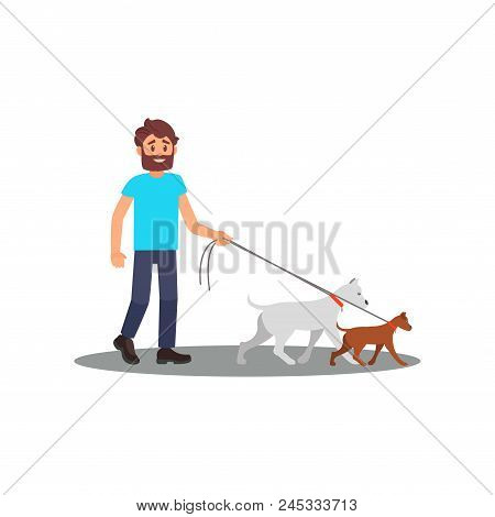 Young Smiling Man Walking With Dogs. Social Worker. Volunteer At Work. Cartoon Character Of Bearded