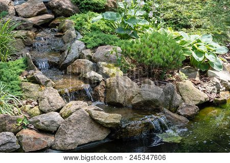 Garden Waterfall. Garden Pond With Water Flowers. Beautiful Pond In A Backyard Surrounded With Stone