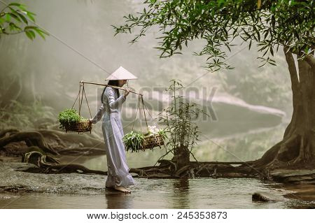The Vietnamese Girl In The Traditional Dress Is Carrying A Basket With Herbs And Lotuses Crossing A